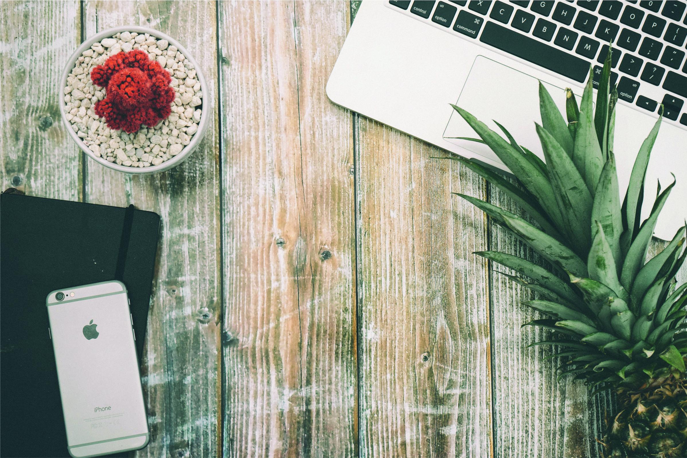 Optymalizacja Magento – szerokie możliwości dla rozwoju sklepu