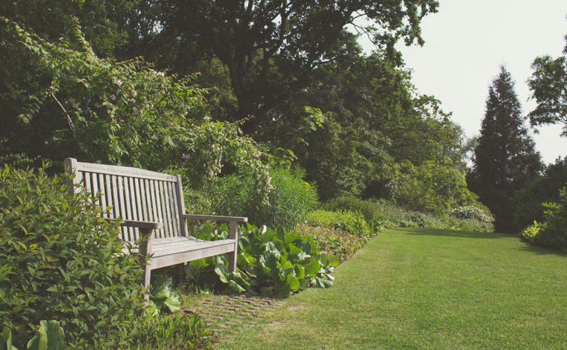 Pielęgnacja zieleni w ogrodzie